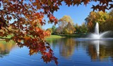 Autumn In the Neighborhood by jerseygurl, photography->landscape gallery