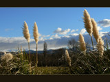 Sunday Respite #3 by LynEve, Photography->Landscape gallery