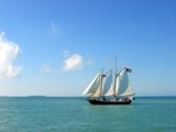 Sails in the Keys by Ronnie_R, Photography->Boats gallery