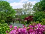 Springtime 2004 by jojomercury, Photography->Landscape gallery