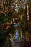 Reflections by biffobear, photography->landscape gallery