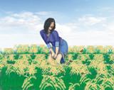TS 84 Rice Field by vangsdesign, Illustrations->Digital gallery