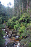 Mount Baw Baw by Samatar, Photography->Landscape gallery