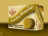 Auntie Madmaven's Vanilla Magillas by Jhihmoac, Illustrations->Digital gallery