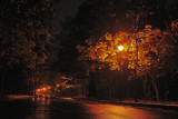 City of lights 6 by andreea_kamelya, Photography->City gallery