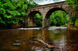 Gibside Bridge by biffobear, photography->bridges gallery