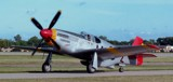 Red Tail P-51 by ted3020, Photography->Aircraft gallery