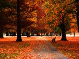 Afternoon of Colors by jojomercury, Photography->Landscape gallery