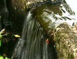 More Water Over the Dam by phasmid, Photography->Waterfalls gallery