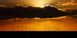 "Golden ""Glorious"" by braces, photography->sunset/rise gallery"