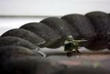 Water War by pauldb, photography->still life gallery