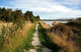 A well walked track by LynEve, photography->landscape gallery