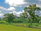 Backyard Bayou by PatAndre, Photography->Landscape gallery