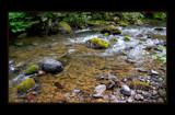 Stanton Creek Moss by Nikoneer, photography->water gallery