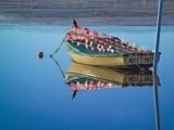 Putt Putt. by trisbert, Photography->Boats gallery
