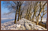 Winter In Zeeland 2009 (03) by corngrowth, Photography->Landscape gallery