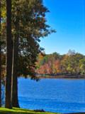 Lake Gaston by ccmerino, photography->shorelines gallery