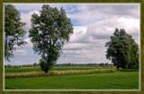 Zeeland Fields by corngrowth, Photography->Landscape gallery