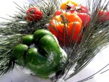 A Winter Salad! by marilynjane, Photography->Food/Drink gallery