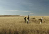 Fence Line by doughlas, photography->landscape gallery