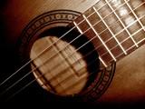 light on my guitar by jttigereye, Music gallery