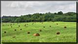 Beautiful Ohio 2 by Jimbobedsel, Photography->Landscape gallery
