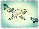 The Sharks by bfrank, illustrations gallery