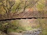 woodland bridge by jeremy_depew, Photography->Bridges gallery