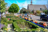 Pumpkin Yard Sale (for Lyn) by corngrowth, photography->food/drink gallery