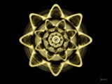 Golden Flower by gabriela2006, abstract gallery