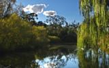 Yass River Idyll. by Mythmaker, Photography->Landscape gallery