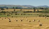 Northumberland Bails by slybri, Photography->Landscape gallery