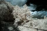 Gateway to Narnia. by biffobear, photography->manipulation gallery