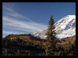 Mt. Rainier by phydeaux, Photography->Mountains gallery