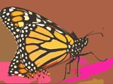 The Monarch Butterfly by LandonC, abstract gallery