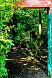 Gateway To A Secret Garden by braces, Photography->Gardens gallery