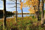 Bush Lake by Silvanus, photography->landscape gallery