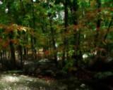 Soul Reflection by jojomercury, photography->landscape gallery