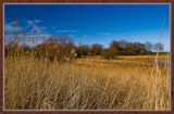 Rammekenshoek 08 by corngrowth, photography->landscape gallery