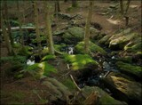 When I Listen to the Brook, I Am Never Lost by Pjsee16, photography->landscape gallery
