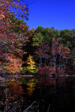 Reflections on Walden Pond by dleuty, photography->shorelines gallery