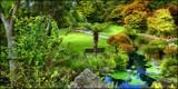 Wonderland 2 by LynEve, photography->gardens gallery