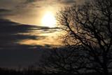 Dark Winter by Silvanus, photography->landscape gallery