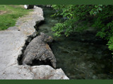 Bark Landing by Anita54, Photography->Landscape gallery