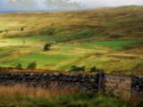 A Gate by biffobear, photography->landscape gallery