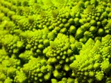 The Fractal Geometry of Nature by kjh000, Contests->In Print gallery