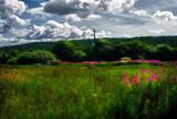 Lang Jack by biffobear, photography->landscape gallery