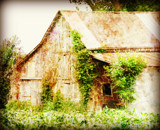 Rusty Old Barn by Starglow, photography->manipulation gallery