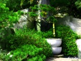 Zen Garden by jojomercury, Photography->Gardens gallery