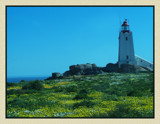 Standing Guard. by SusanVenter, Photography->Lighthouses gallery